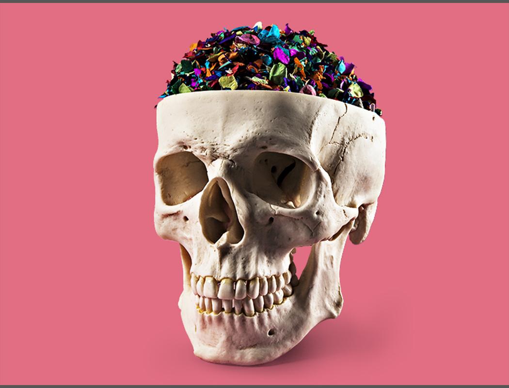 bild1_skull